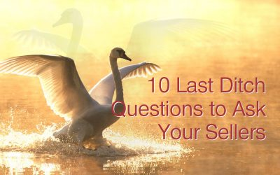 10 Last Ditch Questions To Ask The Sellers