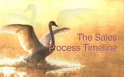 The Sales Process Timeline