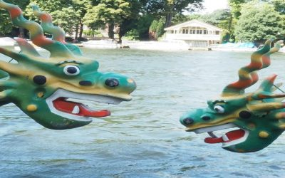 Event: Dragon Boat Race