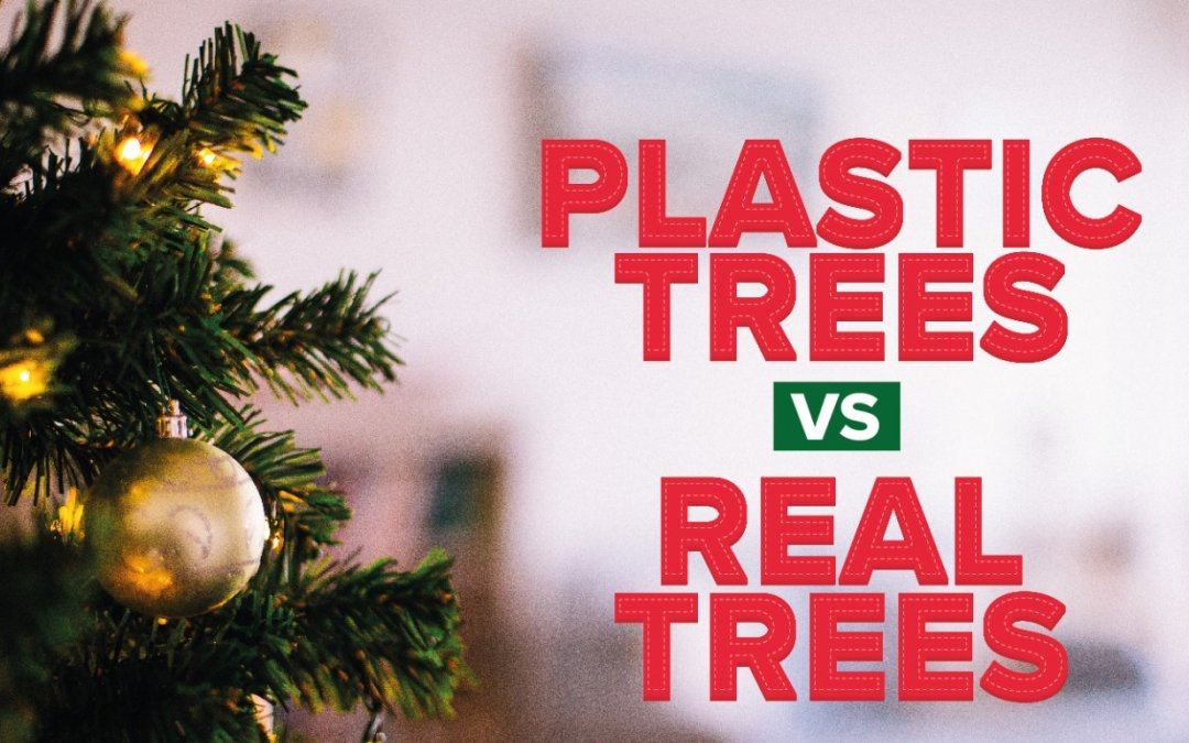 Start Planning Now for a Plastic-less Christmas